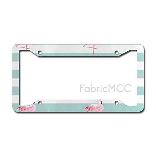 Dom576son License Plate Frame Modern Flamingo Birds on Horizontal Striped Bands Background Love Tropical Graphic, Seafoam Metal Tag Border US Size 12 x 6 Inches Auto License Plate Holder