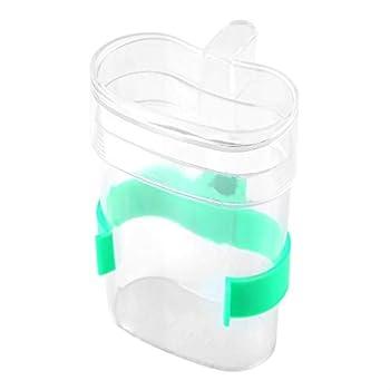 Distributeur Automatique d'eau Parrot Water Feeder Bol Transparent Pratique Oiseaux Eau Potable Biberon Abreuvoirs Automatiquement avec Un Composant Logiciel Enfichable