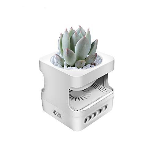 NO BRAND Planta de Tiesto purificador de Aire de Escritorio pequeño Dormitorio del hogar for Eliminar el Olor de Aire Fresco humidificador