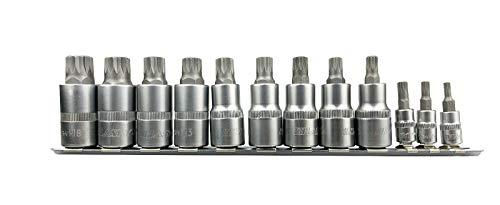 Haskyy Juego de 12 llaves de vaso dentadas XZN, juego de llaves de vaso dentadas, M4, M5, M6, M8, M9, M10, M11, M12, M13, M14, M16, M18