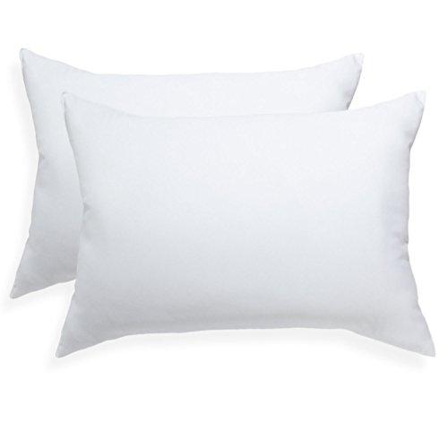 Pegasus Home Fashions EZ Dreams Microfiber Pillow, Standard/Queen, 2-Pack