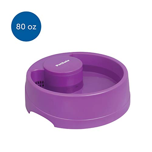 PetSafe Current Pet Water Fountain, Circulating Drinking Fountain for Cats and Dogs, Medium, Purple, 80 oz. Water Capacity