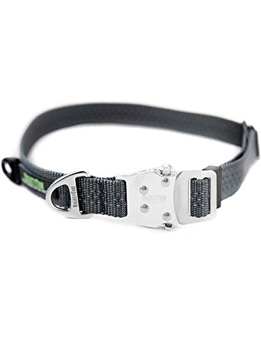 Mighty Paw Metal Buckle Dog Collar, All Metal Hardware, Lightweight Collar, Reflective Stitching, Strong, Durable (Large, Grey)