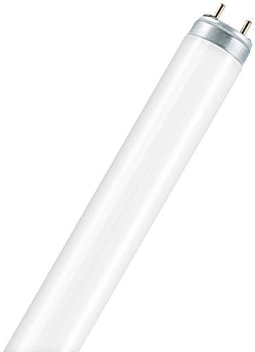 Osram Lumilux Deluxe T8, TL-lampen, stopcontacten G13L 36 W/930