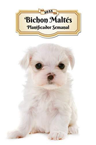 2021 Bichon Maltés Planificador Semanal: 107 Páginas | Tamaño A5 | Calendario | 12 Meses | 1 Semana en 2 Páginas | Agenda Semana Vista | Tapa Blanda | Perro