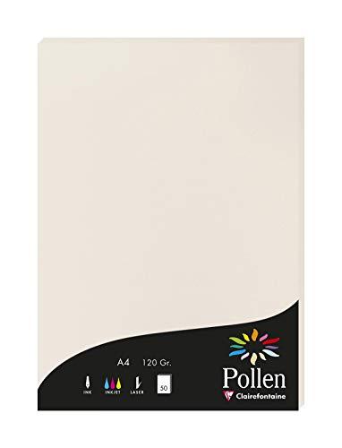 Clairefontaine 4268C Packung mit 50 Karten Pollen 120g, DIN A4, 21 x 29,7cm, Hellgrau