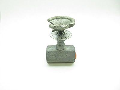 NAO 9070 STEAM Globe Valve 1/2IN NPT D598143 by NAO