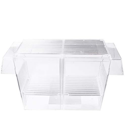 Balacoo Fischzuchtbox - Acryl Aquarium Container Aquarium Brutkasten Inkubator für Kleine Babyfische Garnelen Clownfisch