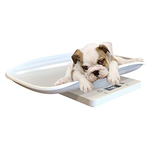Non Pet Dog Weighting Scale,Digital Newborn Puppy Kitten Scale,Digital Baby Scale,Kitchen LCD Display Food Scale,Capacity up to 10 kg /22 lb