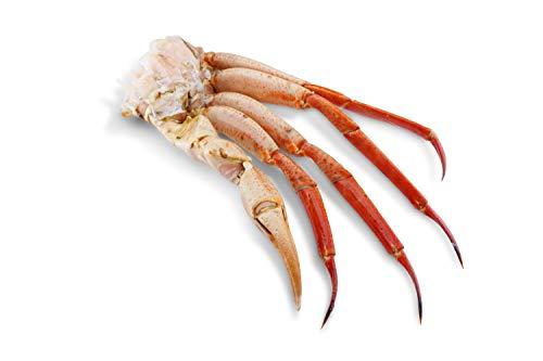 Deep Sea Red Crab - Rote Tiefseekrabbe - gekocht in schale - Spanien (1200g)