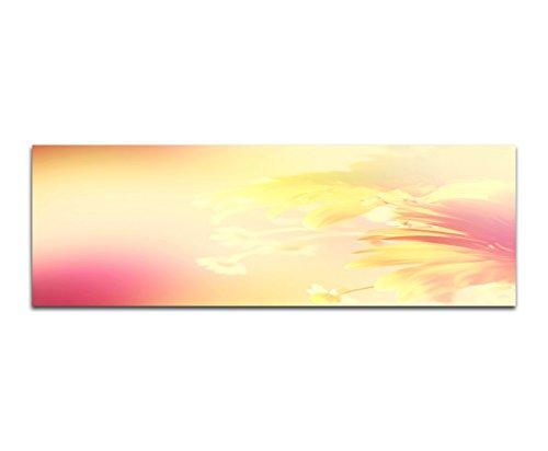 Paul Sinus Art Panoramafoto op doek en spieraam 150x50cm bloemen zonlicht kleurfilter abstract