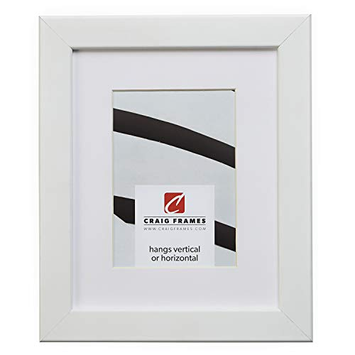 Craig Frames 26267 22 x 28 Inch White Satin Picture Frame Matted to Display an 18 x 24 Inch Photo
