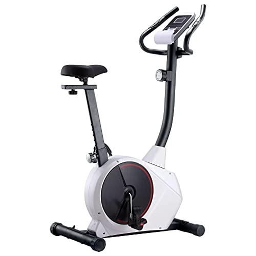 VIENDADPOW Bicicleta estática magnética con pulsómetro