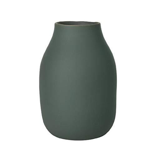 Blomus Vase-65704 Vase, Agave Grün, H 20 cm, Ø 14 cm