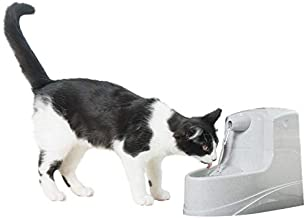 PetSafe Drinkwell Mini Pet Fountain for Cats and Small Dogs, 40 oz Capacity Water Dispenser with Filter Included, PWW00-14402