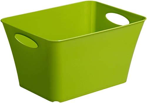 Rotho Living Aufbewahrungsbox 11l, Kunststoff (PP) BPA-frei, grün, 11l (35,5 x 26,0 x 19,2 cm)