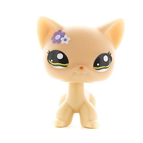 Shorthair Pet Shop Cat – #1922 Pretty Yellow Kitty – Rare Cat Figure with Purple Flowers – Cute Golden Eyes Short Hair Kitty– Littlest Animal Toy for Children - Boys & Girls - 1pc