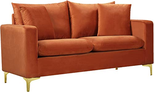Meridian Furniture 633Cognac-L Naomi Collection Modern | Contemporary Velvet Upholstered Loveseat with Deep Channel Tufting and Rich Gold Stainless Steel Legs, 58' W x 33.5' D x 30' H, Cognac