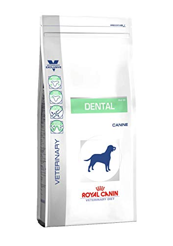 Royal Canin VET DIET Dental large dog 6 kg