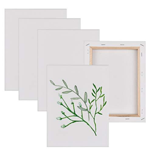 FOROREH Kit 5 Lienzos para Pintar 20x30cm,Canvas Lienzo para Pintura al Óleo Acrílica,Lienzos de Algodón con Bastidor de Madera para Telas Blancas,Pintura Canvas para Dibujar Decoración de Arte
