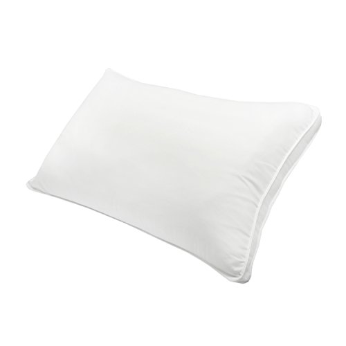 Shop Century Home Bed Pillows on DailyMail