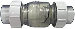 Swing Check Valve, 3.0in Clear