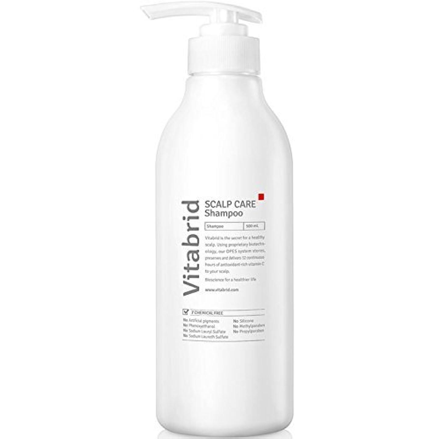 法廷キー比喩Vitabrid Scalp Care Shampoo, 20 Ounce [並行輸入品]