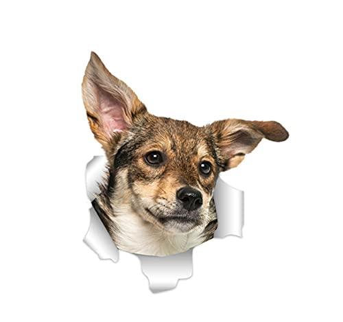 MDGCYDR Pegatinas Coche 20Cm 3D Hound Dog Stickers Calcomanía En La Pared Nevera WC Coche Bicicleta
