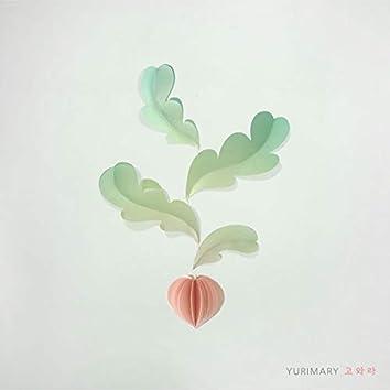 YURIMARY - 고와라 (Feat. 이향유)
