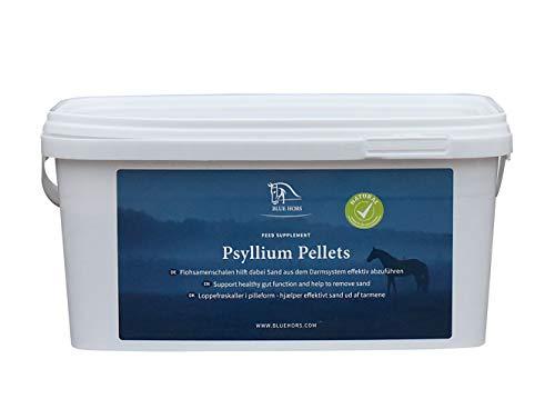Blue Hors Psyllium Pellets - Flohsamenschalen in Pelletform, sehr gut geeignet für wählerische Pferde. Ergänzungsfutter/Zusatzfutter für Pferde und Ponys, Flohsamen, Magen, Sand, Verdauung