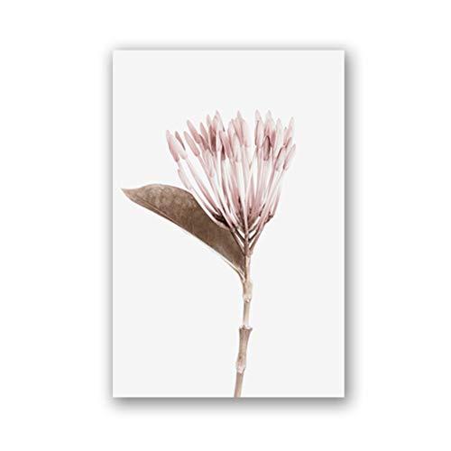 DFSDG Botanische Blumen Poster und Druckerei Galerie Wandkunst Leinwand Malerei Pflanze Wandbilder Für Wohnzimmer Wohnkultur (Color : Style 3, Size : 50x70 cm Frameless)