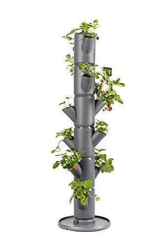 Sissi Strawberry (Classic, anthrazit/grau) - Pflanzgefäß/Topf/Pflanzturm/Hochbeet für Erdbeeren - für Balkon, Garten und Terrasse - Erdbeeren und Kräuter anpflanzen