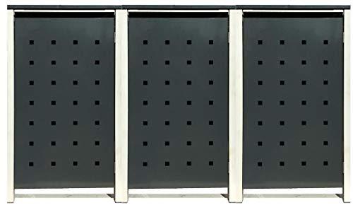 3 Tailor Mülltonnenboxen Basic Duo für 120 Liter Tonne/Stanzung 2 / Farbe RAL 7016 Anthrazit/Rahmen RAL 9006 hell Grau/Verschönern Sie Ihre unansehnliche Mülltonnen in Ihrem Hof und Garten!