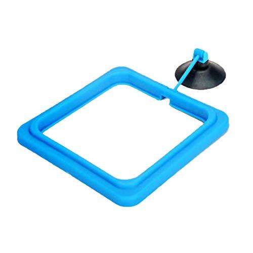 FLAMEER Futterring Aquarium mit Saugnapf Teichfutterring Fütterungsring Fütterung Werkzeug - Blau, quadratisch