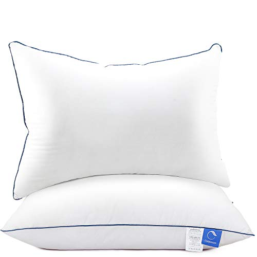 W Queen Pillows 2 Pack,Luxury Hotel Cooling Down Alternative Pillows Fiber Filled Bed Pillows,Hypoallergenic Pillow for Side and Back Sleeper,Fluffy Queen Size Sleeping Pillow for Neck Pain Relief