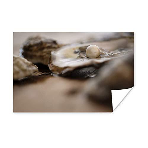 Poster Shells - Perle in der Schale einer Auster 90x60 cm / Strand - Fotodruck auf Poster - Wanddekoration Wohnzimmer / Schlafzimmer