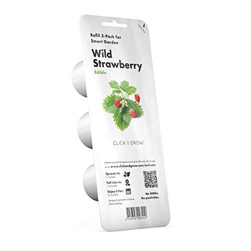 Click & Grow 4742793006536 Strawberry Refill 3-Pack, Verde, 7x7x21 cm