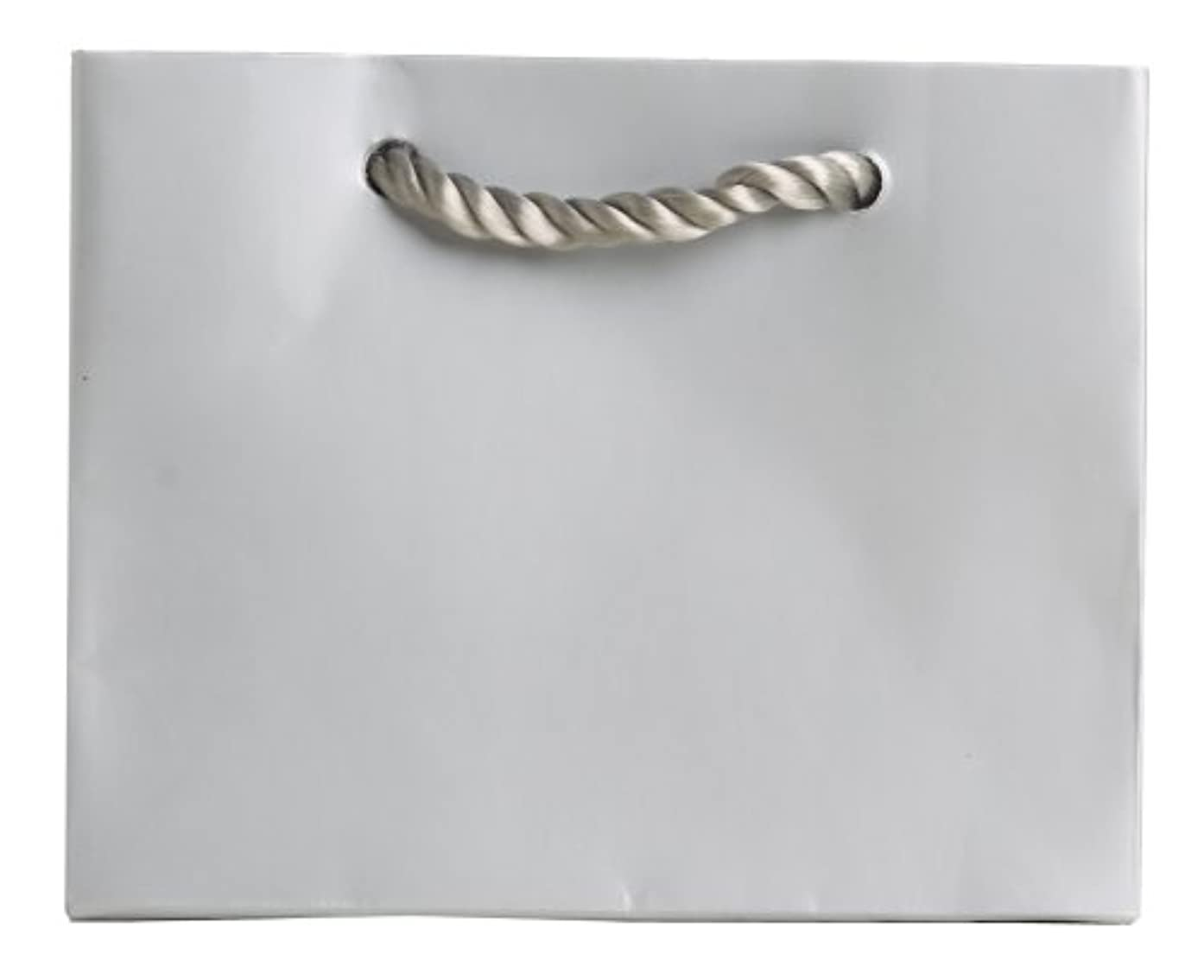 Jillson Roberts Bulk Tiny Tote Gift Bags Available in 11 Colors, Silver Matte, 120-Count (BTT914)