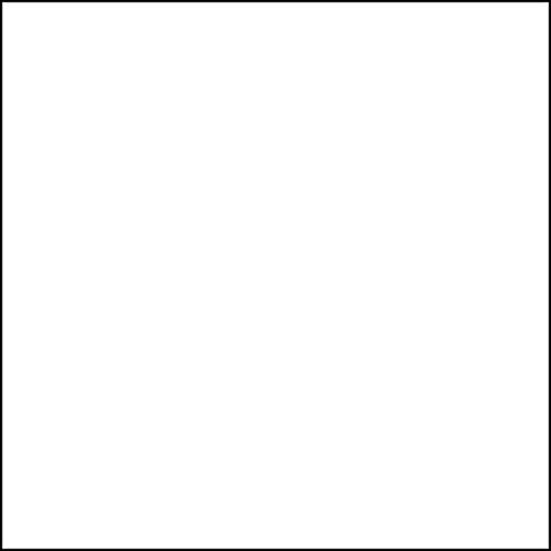 Ravelli Prism Backdrop AMW1020, Fondale da Studio per Riprese Video e Fotografia, Bianco, 2.7 x 5.5 m