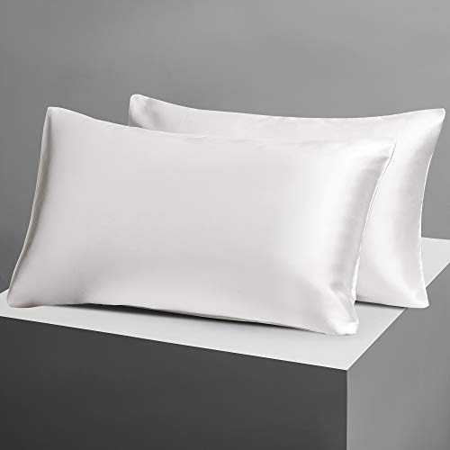 Candoury Satin Silk Pillowcase for Hair and Skin, Standard Size Set of 2 Pillow Cases, Soft Silky Pilow Covers 2 Pack with Envelope Closure (20x26, Ivory)