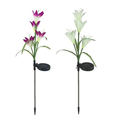 NiceButy Lamiglia Solare Lampada a LED Flower Flower Lampada Decorativa Giardino retrò Giardino luci Colorate luci 2pcs
