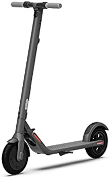Segway Ninebot E22 Electric Kick Scooter with External Battery