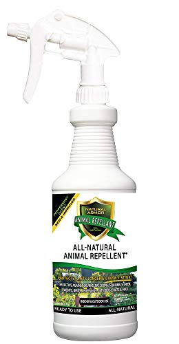 Natural Armor Animal & Rodent Repellent Spray. Repels Skunks, Raccoons, Rats, Mice, Deer Rodents & Critters. Repeller & Deterrent in Powerful Peppermint Formula – 32 FL. OZ. Quart Ready to Use