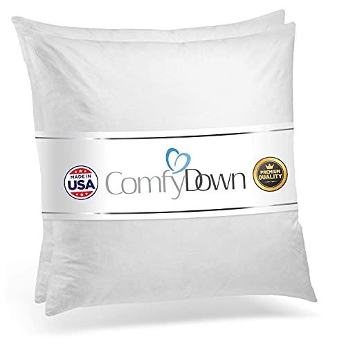 20x20 (2 Pack) Decorative Throw Pillow Insert,...