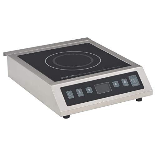 vidaXL - Cocina de inducción eléctrica con Pantalla tá