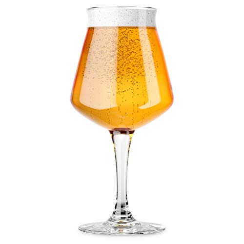 Nucleated Teku Stemmed Beer Glass 3.0