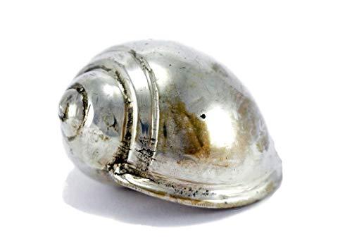 Brillibrum design schelp verzilverd patina-look slak van metaal massief deco papier tafeldecoratie
