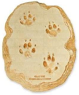 Gray Fox Footprint (22x17cm)