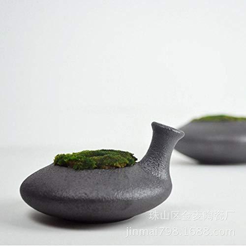 deendeng keramische vaas vaas glas vaas woonkamer hydroponische plant bloem arrangement terrarium bloem vaas