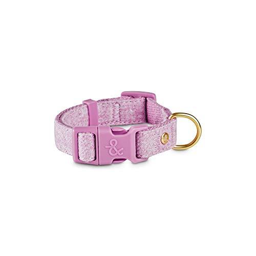 Petco Brand - Bond & Co. Lavender Tweed Dog Collar, Small, Purple